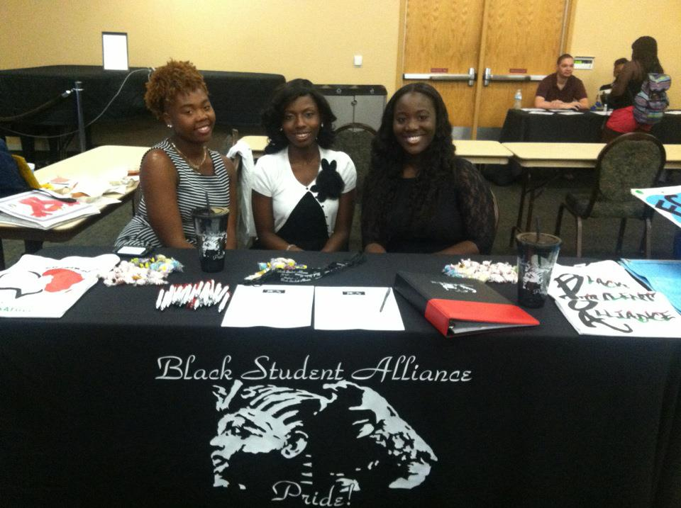 BSA at RSO fair